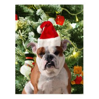 Santa Hat Bulldog Christmas Tree Snowman Gift Box Postcard