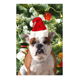 Santa Hat Bulldog Christmas Tree Snowman Gift Box Stationery