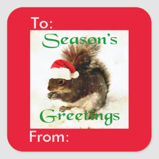 Santa Hat Christmas Squirrel In Snow Gift Tag