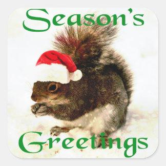 Santa Hat Christmas Squirrel In Snow Square Sticker