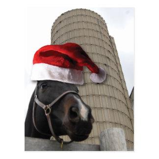 Santa Hat Horsey Postcard