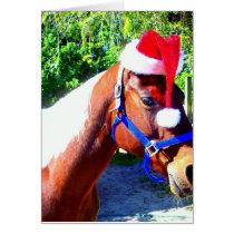 Santa Horse Card