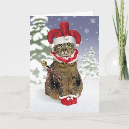santa jester cat christmas cards