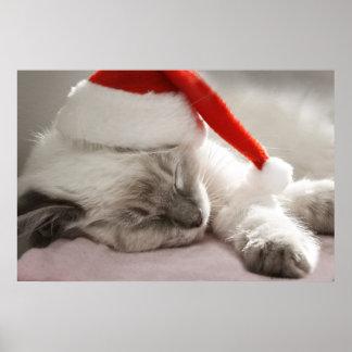 santa kitten poster