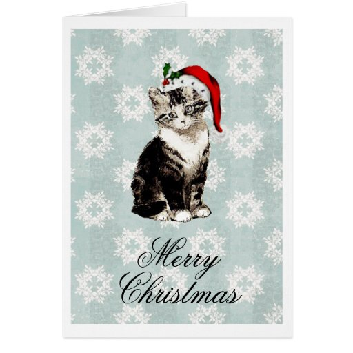 Santa Kitten Snowflakes Christmas Card
