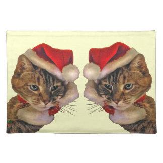 Santa Kitty Cloth Placemat