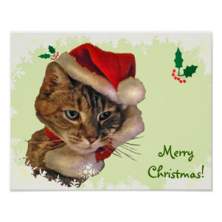 Santa Kitty with Holly Poster
