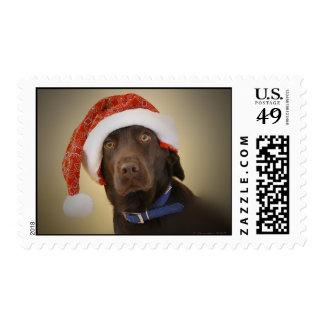 Santa Lab for Christmas Postage