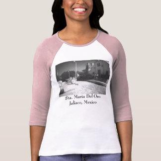 Santa Maria Del Oro Plaza-Iglesia Antigua, Sta.... T-Shirt