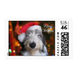 Santa Old English Sheepdog Christmas Postage Stamp