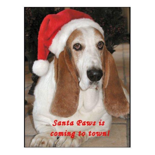 Santa Paws Blank Postcard