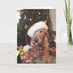 Santa Paws Christmas Card card