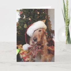 Santa Paws Christmas Card card