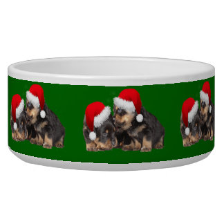Santa Paws Is Coming to Town Bowl