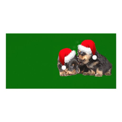 Santa Paws Is Coming to Town Photo Card