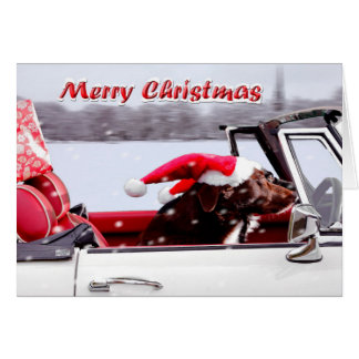 Santa Paws on a Mission! Card