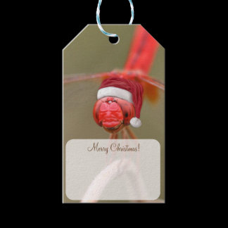 Santa Red Dragonfly Christmas Personalized Gift Tags