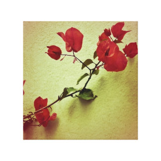 Santa Rita Flower in Warm Colors Wall Photo Canvas Print