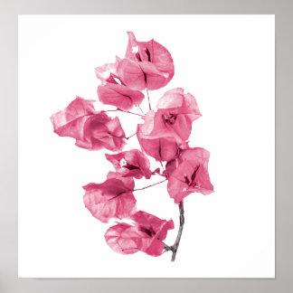 Santa Rita Flowers Photo Poster