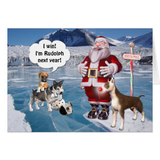 Santa s Rudolph is a Bull Terrier Dog Greeting Cards