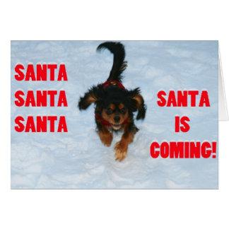Santa, Santa, perro de aguas de rey arrogante Char Tarjeta De Felicitación