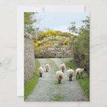 Santa Sheep Holiday Card