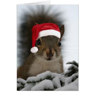 Santa Squirrel Card