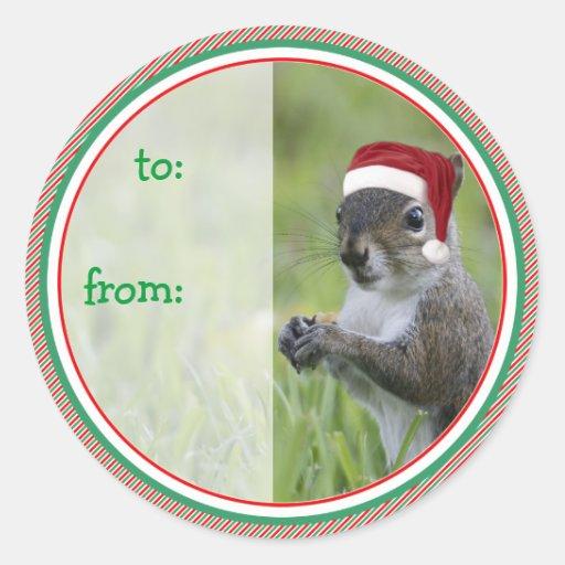 Santa Squirrel Classic Round Sticker