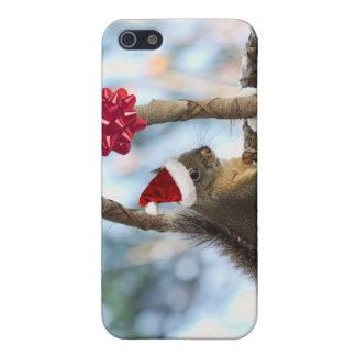 Santa Squirrel in Snow Cases For iPhone 5