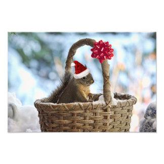 Santa Squirrel in Snow Photo Print