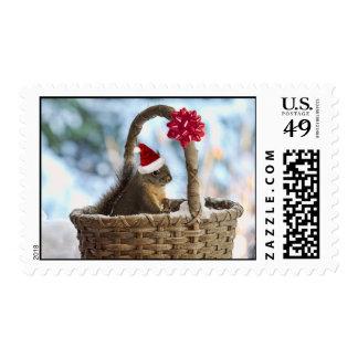 Santa Squirrel in Snow Stamp