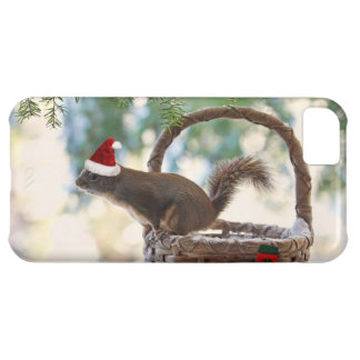Santa Squirrel in Snowy Christmas Basket iPhone 5C Cases