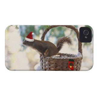 Santa Squirrel in Snowy Christmas Basket Blackberry Case