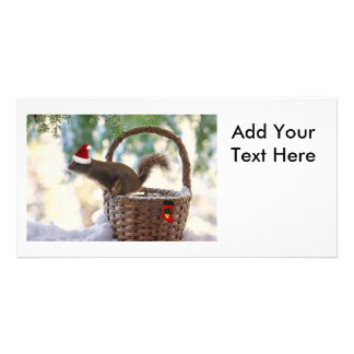 Santa Squirrel in Snowy Christmas Basket Customized Photo Card