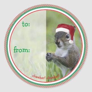 Santa Squirrel is Coming to Town for Christmas Classic Round Sticker