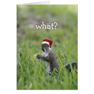 Santa Squirrel: What? A Squirrel Can't Be Jolly? Card