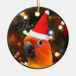 Santa Sun Conure Christmas Ornament