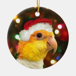 Santa White Bellied Caique Christmas Ornament