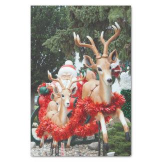 Santa y reno papel de seda