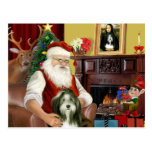 Santa's Bearded Collie (#9) Postcard