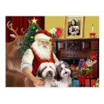 Santa's Bearded Collie Post Cards