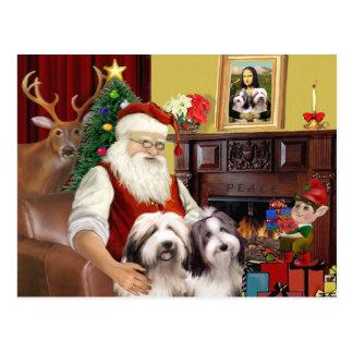 Santa's Bearded Collie Postcard