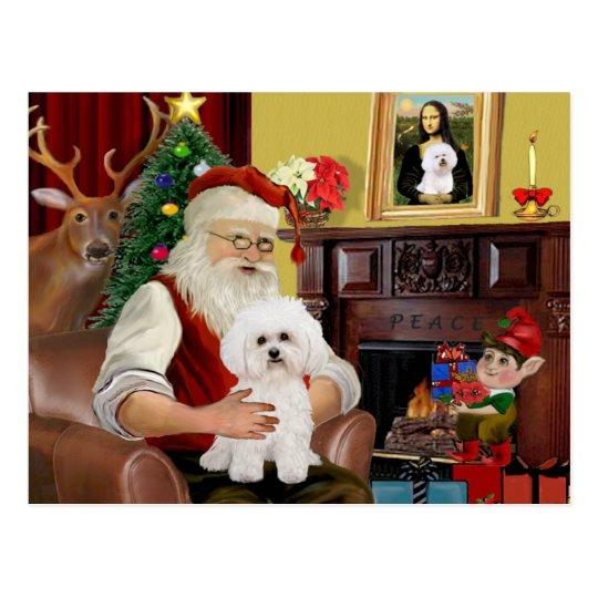 Santa's Bichon Frise #2 Postcard