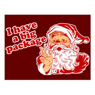 Santas Big Package Post Card
