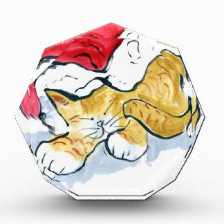 Santa's Hat Nap Award
