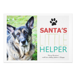 Santa's Helper- Pet Photo Holiday Flat Cards