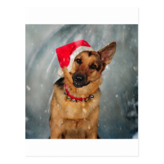 Santas helper postcard