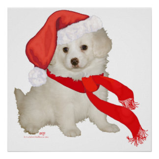 Santa's Helper Puppy Poodle / Bichon Mix Poster