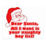Santa's Naughty Boy List Post Cards