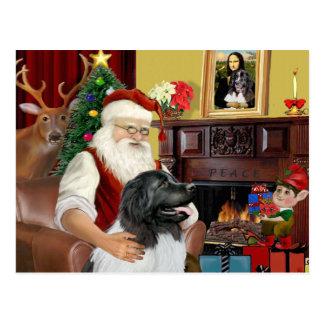 Santa's Newfie Landseer Postcard